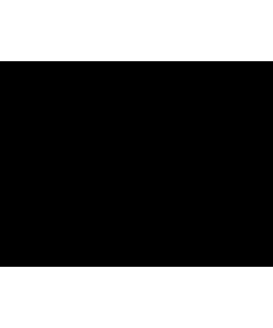 Стол рабочий А-004 Размер: 1600*730*760 мм